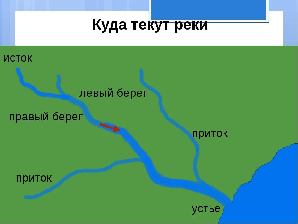 исток приток приток устье левый берег правый берег Куда текут реки