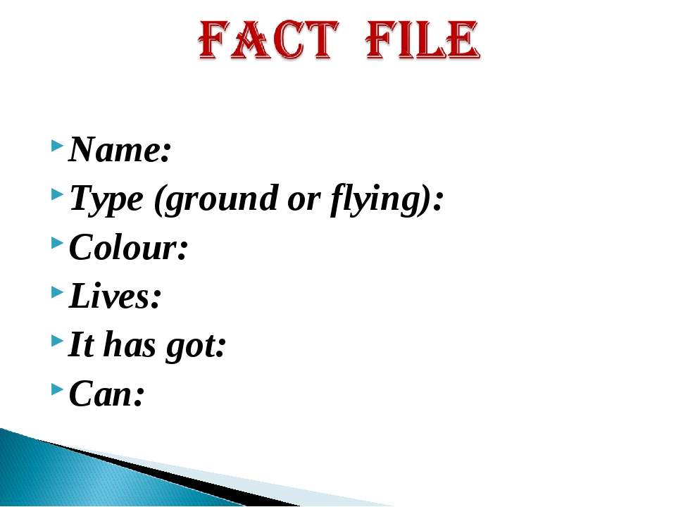 Name: Type (ground or flying): Colour: Lives: It has got: Can: