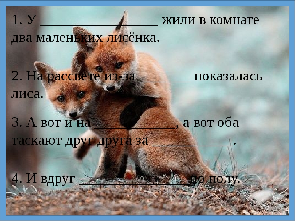 1. У ________________ жили в комнате два маленьких лисёнка. 2. На рассвете из...