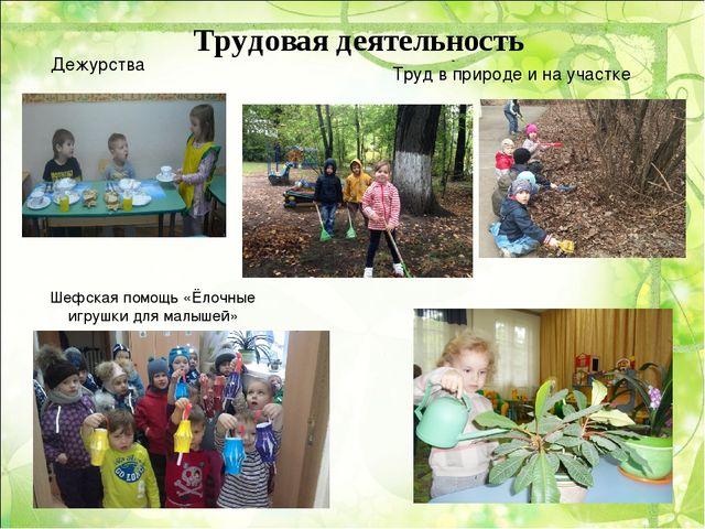 Трудовая деятельность Дежурства Труд в природе и на участке Шефская помощь «Ё...