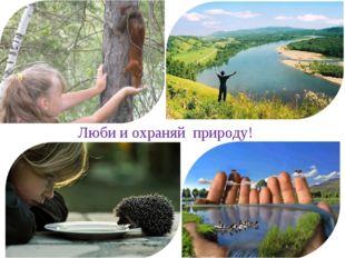 Люби и охраняй природу!