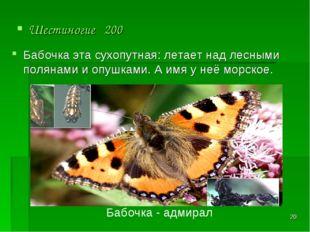 * Шестиногие 200 Бабочка - адмирал Бабочка эта сухопутная: летает над лесными