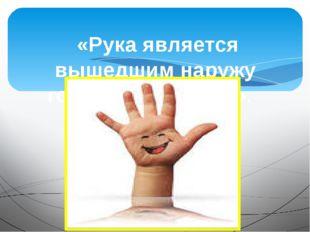 «Рука является вышедшим наружу головным мозгом». И.Канта