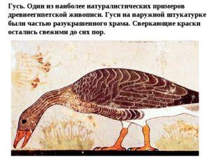 Гусь. Один из наиболее натуралистических примеров древнеегипетской живописи.