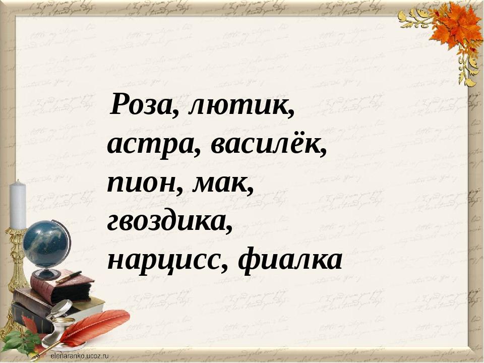 Роза, лютик, астра, василёк, пион, мак, гвоздика, нарцисс, фиалка
