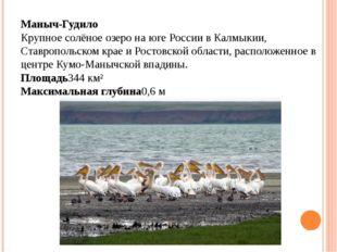 Маныч-Гудило Крупное солёное озеро на юге России в Калмыкии, Ставропольском к