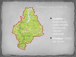 Граничит с Казахстаном, Свердловской, Курганской, Омской областями. Площадь-