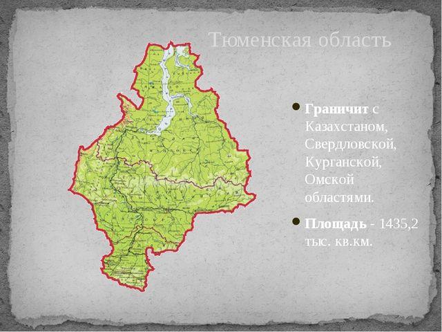 Граничит с Казахстаном, Свердловской, Курганской, Омской областями. Площадь-...
