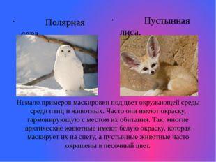 Немало примеров маскировки под цвет окружающей среды среди птиц и животных. Ч