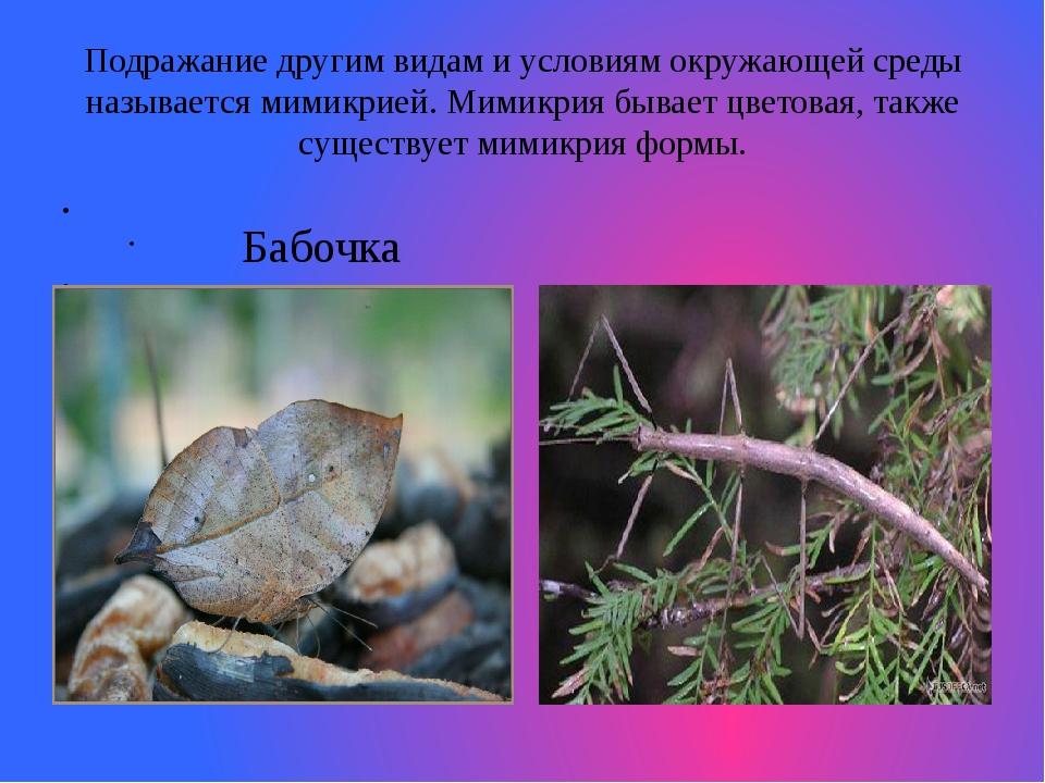 Подражание другим видам и условиям окружающей среды называется мимикрией. Мим...