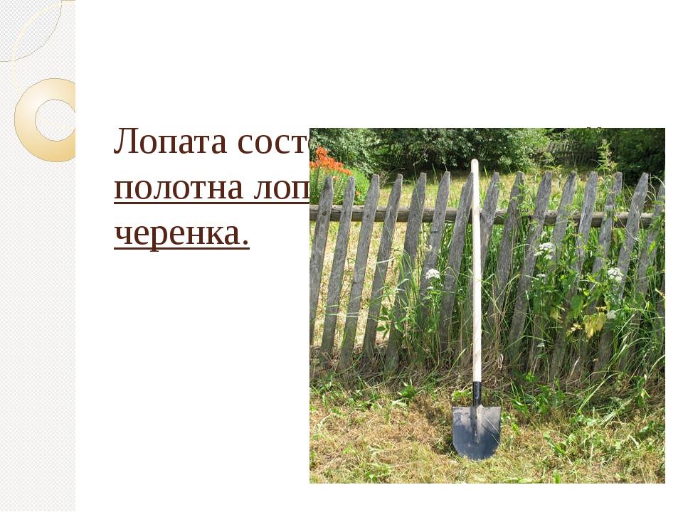 Лопата состоит из трех частей – полотна лопаты, тулейки и черенка.