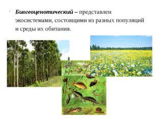 Биогеоценотический– представлен экосистемами, состоящими из разных популяций