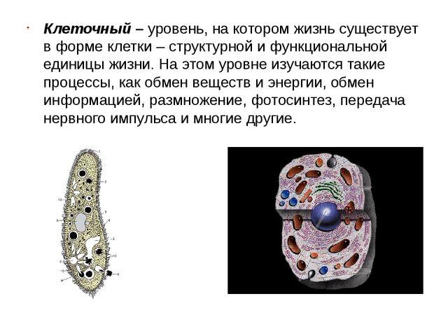 Клеточный –уровень, на котором жизнь существует в форме клетки – структурной...