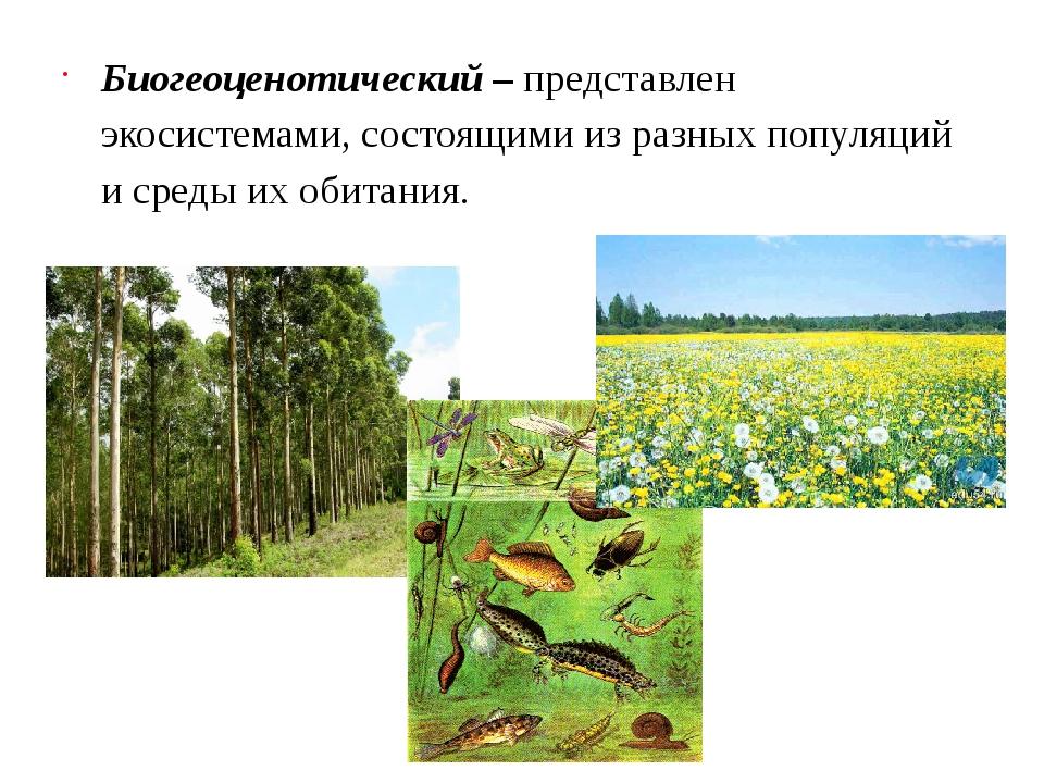 Биогеоценотический– представлен экосистемами, состоящими из разных популяций...
