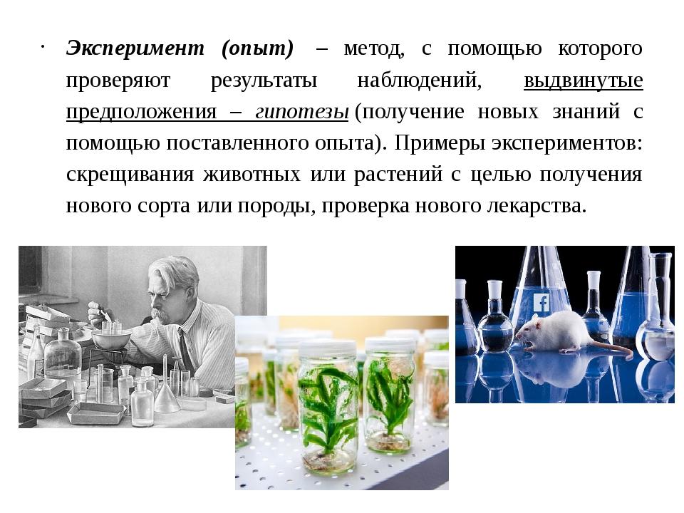 Эксперимент (опыт) – метод, с помощью которого проверяют результаты наблюден...