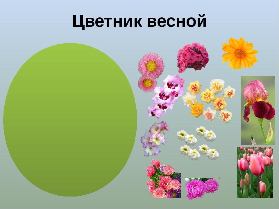 Цветник весной