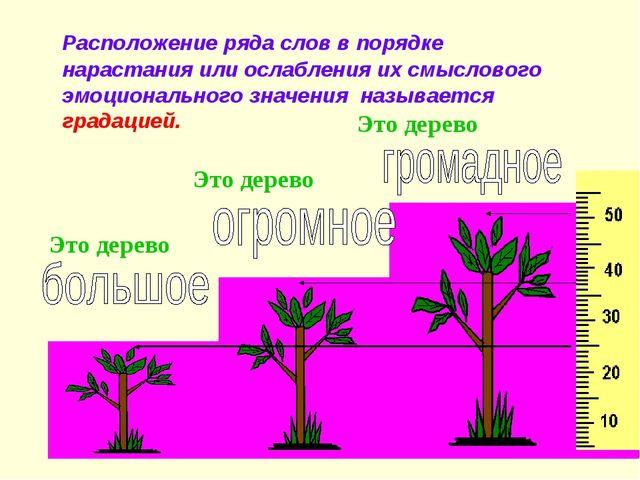 Это дерево Это дерево Это дерево Расположение ряда слов в порядке нарастания...