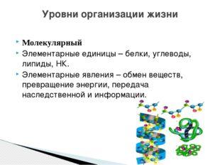 Молекулярный Элементарные единицы – белки, углеводы, липиды, НК. Элементарные