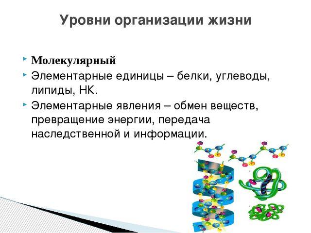 Молекулярный Элементарные единицы – белки, углеводы, липиды, НК. Элементарные...