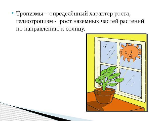 Тропизмы – определённый характер роста, гелиотропизм - рост наземных частей р...