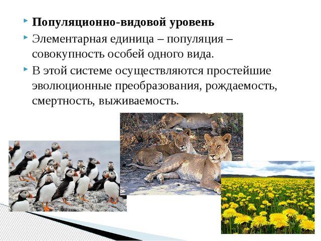 Популяционно-видовой уровень Элементарная единица – популяция – совокупность...