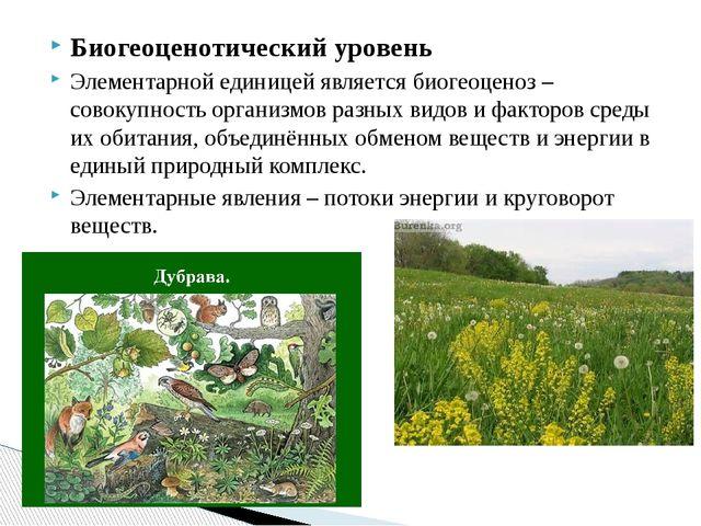 Биогеоценотический уровень Элементарной единицей является биогеоценоз – совок...