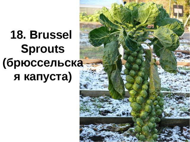 18. Brussel Sprouts (брюссельская капуста)