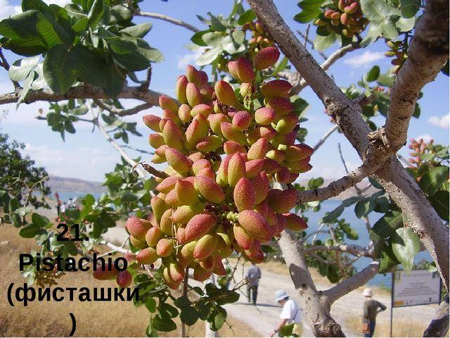 21. Pistachio (фисташки)