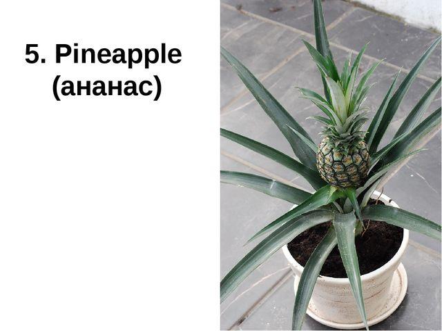 5. Pineapple (ананас)