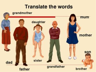 Translate the words grandmother grandfather son mother father daughter dad mu