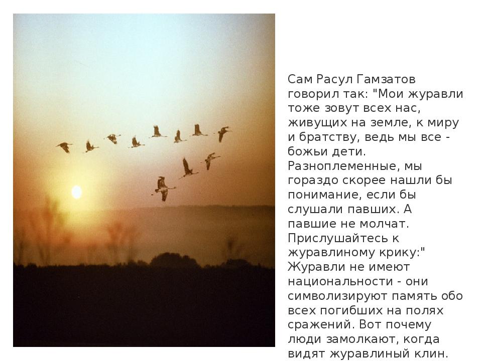 """Сам Расул Гамзатов говорил так: """"Мои журавли тоже зовут всех нас, живущих на..."""