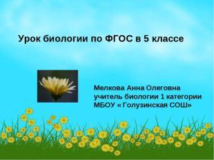Урок биологии по ФГОС в 5 классе Мелкова Анна Олеговна учитель биологии 1 кат