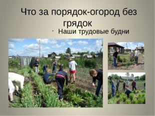 Что за порядок-огород без грядок Наши трудовые будни
