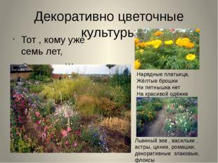 Декоративно цветочные культуры Тот , кому уже семь лет, Скажет: «Школа, здрав