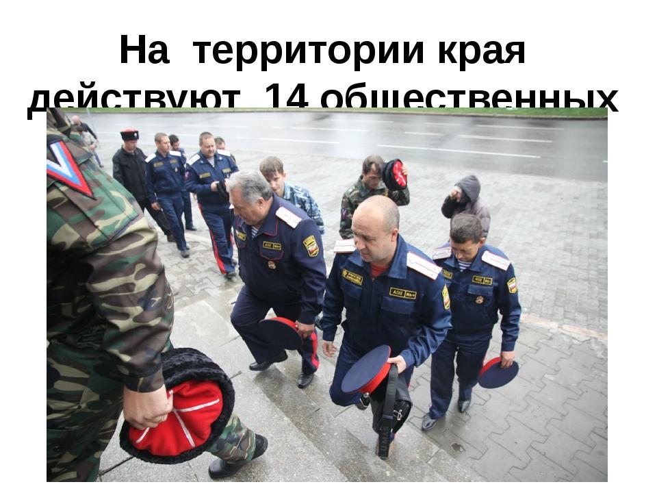 На территории края действуют 14 общественных казачьих организаций.