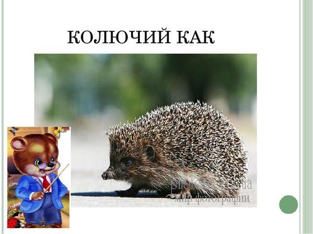 КОЛЮЧИЙ КАК