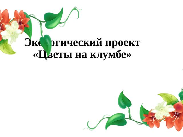 Экологический проект «Цветы на клумбе»