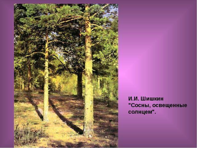 """И.И. Шишкин """"Сосны, освещенные солнцем""""."""