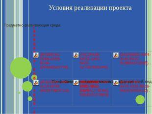 Условия реализации проекта