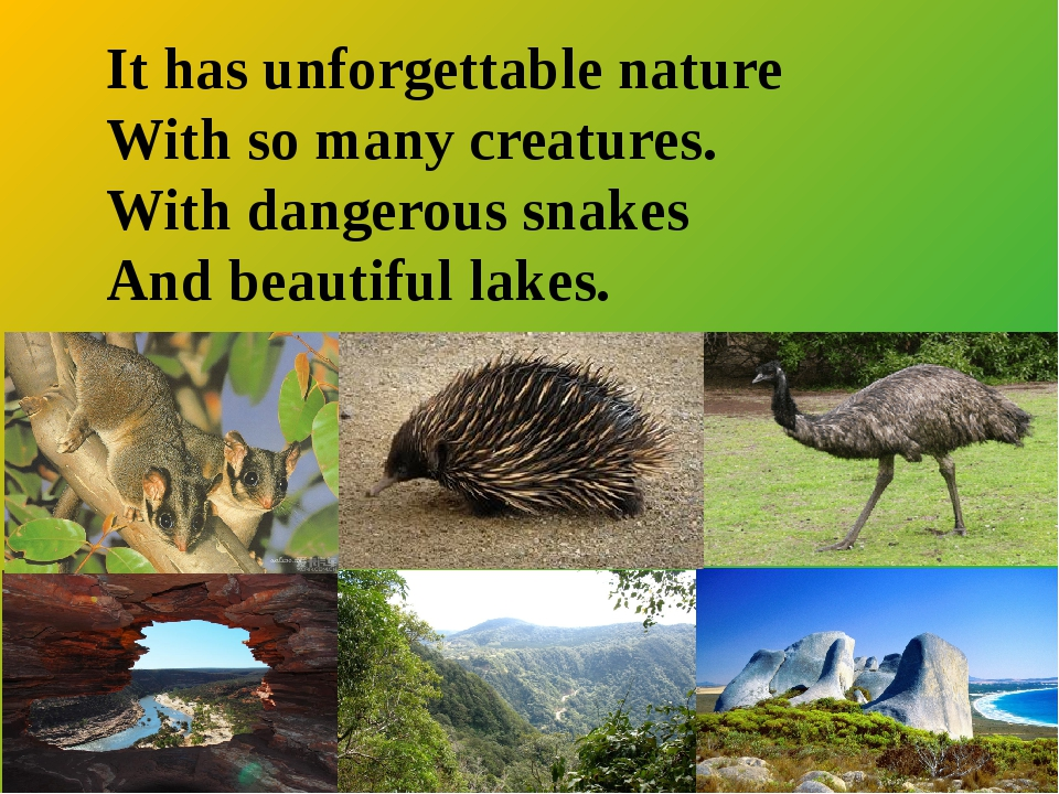 It has unforgettable nature With so many creatures. With dangerous snakes An...