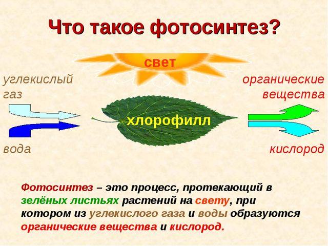 Что такое фотосинтез? Фотосинтез – это процесс, протекающий в зелёных листьях...