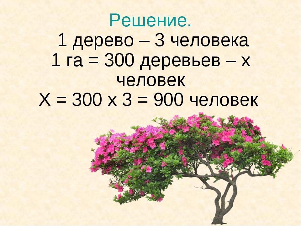 Решение. 1 дерево – 3 человека 1 га = 300 деревьев – х человек Х = 300 х 3 =...