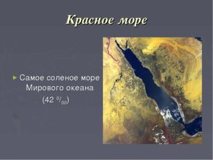 Красное море Самое соленое море Мирового океана (42 0/00)
