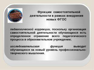 Функции самостоятельной деятельности в рамках внедрения новых ФГОС педагогиче