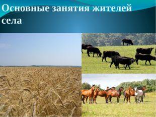 Основные занятия жителей села