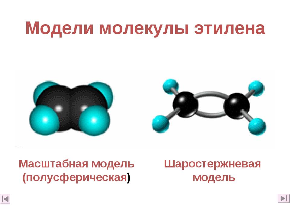 Модели молекулы этилена Масштабная модель (полусферическая) Шаростержневая мо...