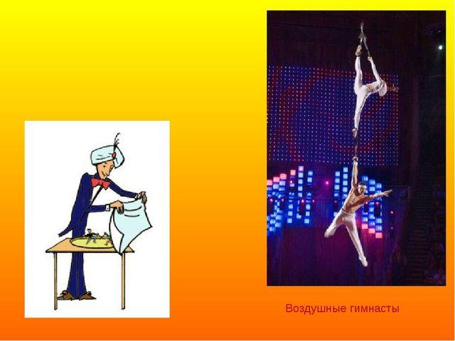 Воздушные гимнасты