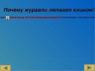 Ссылки на источники: Математика 5 класс. И.И Зубарева, А.Г Мордкович., М.: Мн