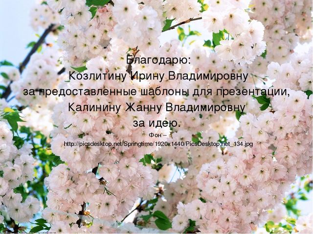 Благодарю: Козлитину Ирину Владимировну за предоставленные шаблоны для презен...