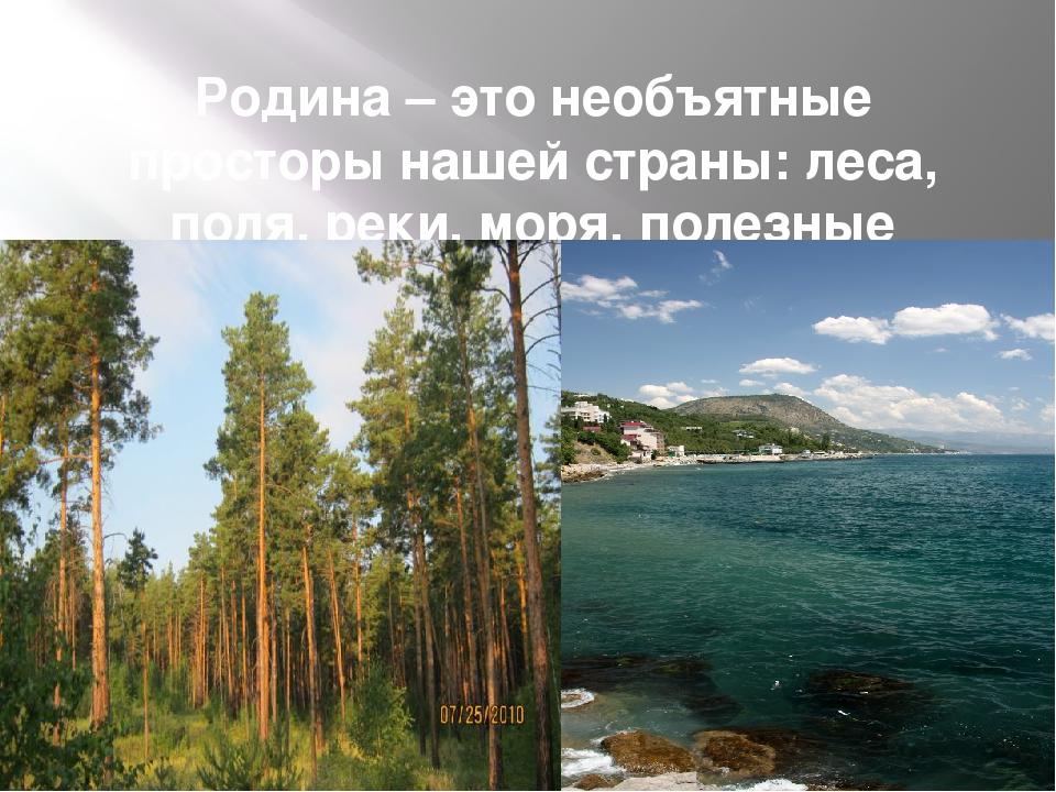 Родина – это необъятные просторы нашей страны: леса, поля, реки, моря, полезн...